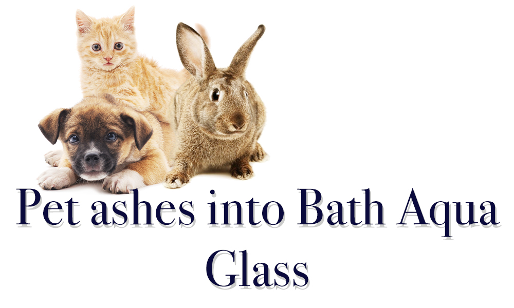Pets Ashes